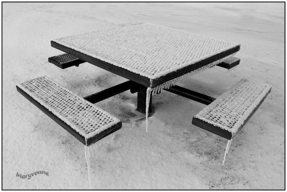 hiver glace table parc