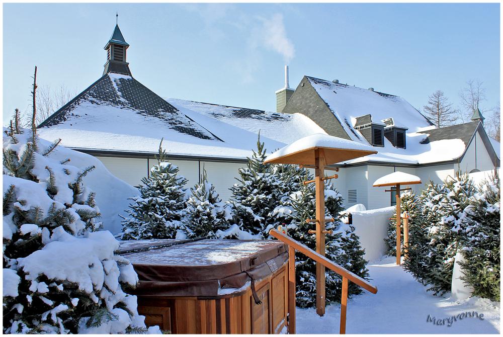 spa hiver neige arbres