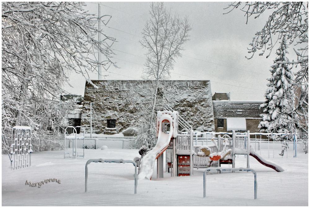 hiver parc neige jeux arbres