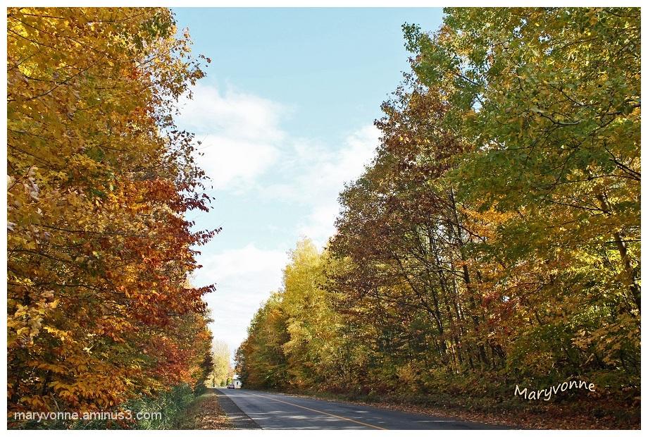L'automne converge