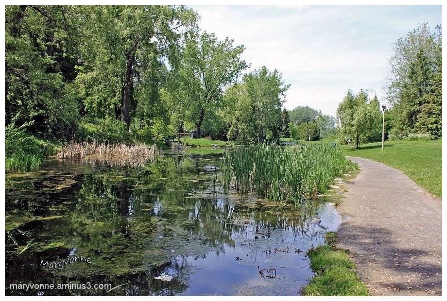 Promenade au parc