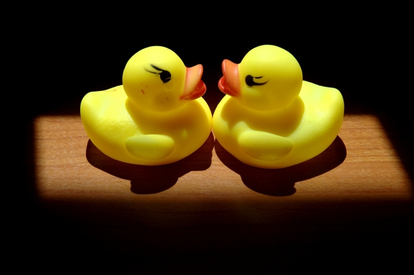 Toy Duckies