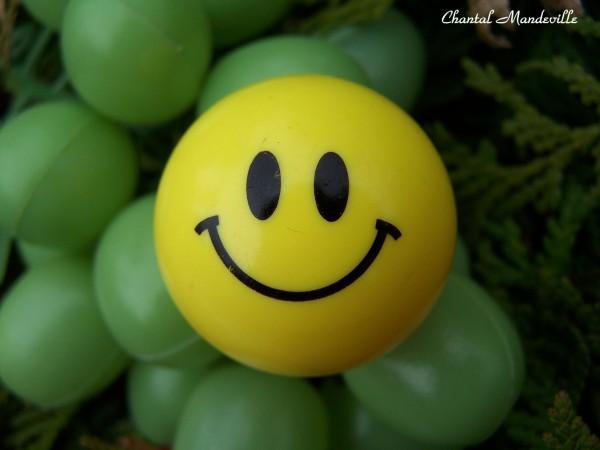 Souris, la vie est belle!