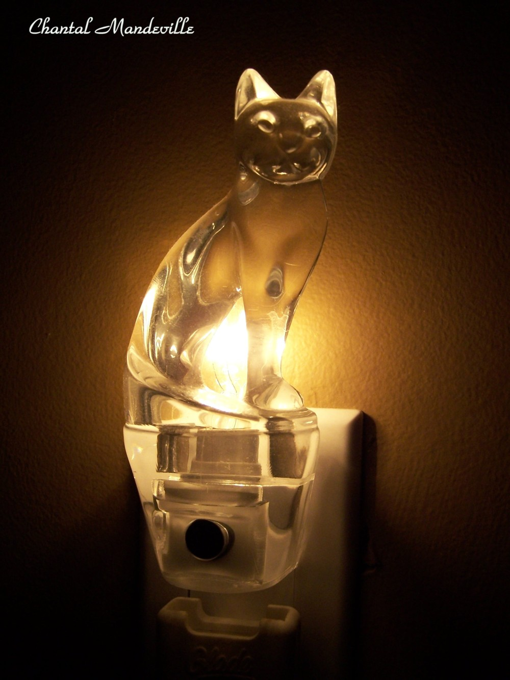 Night Light Cat