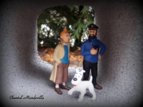 Tintin et ses amis