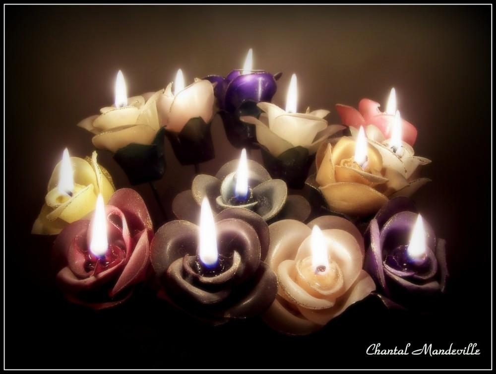 Roses en Chandelles...