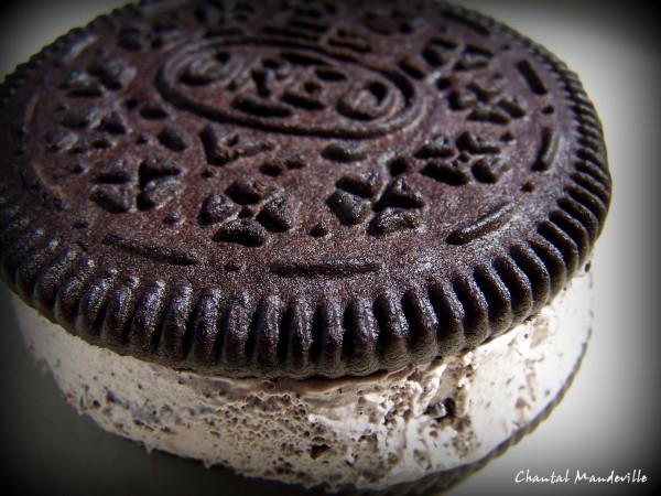 Oreo Ice Cream Cookie