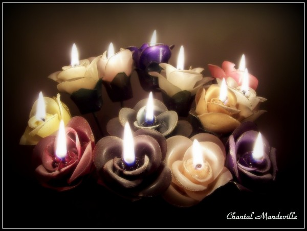 Roses Candles