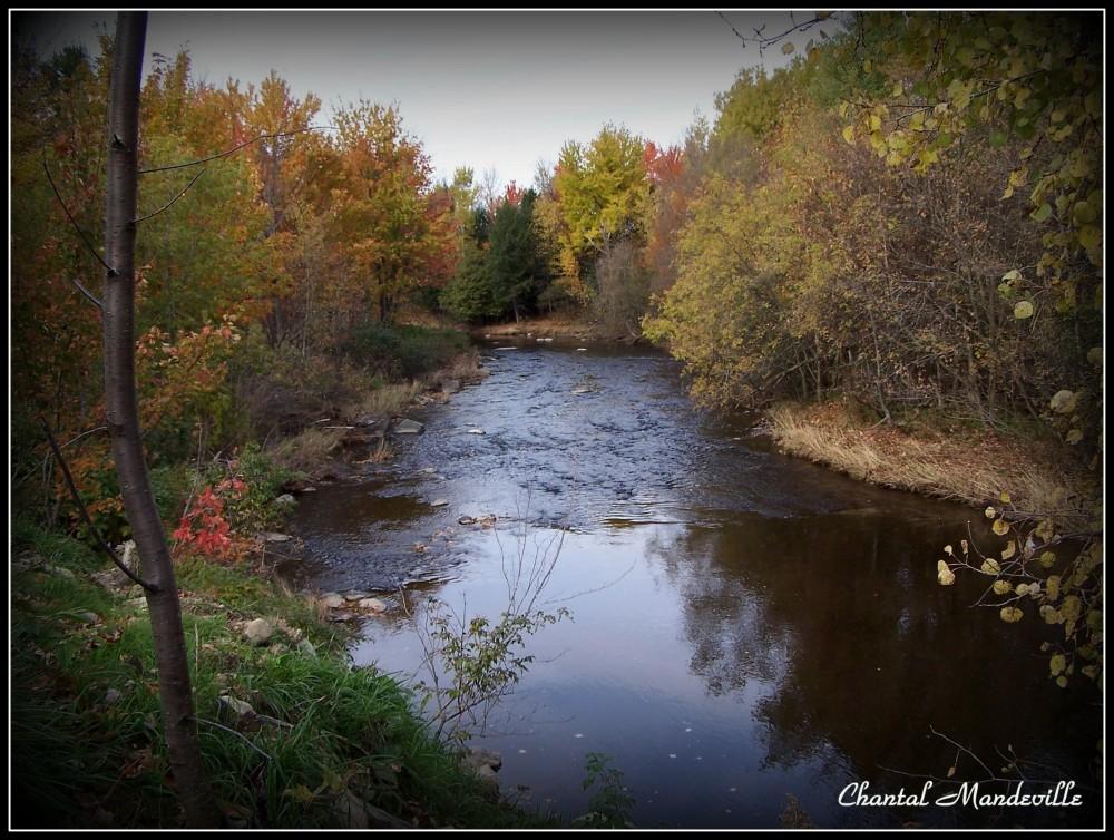 La Rivière en Automne