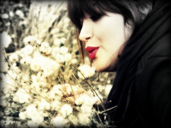 Dream of the dandelions