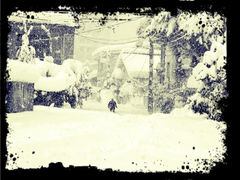 shahsavar..My Snow City