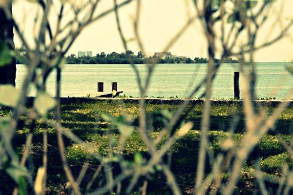 Nichupté Lagoon, Cancún, México. Focus 2