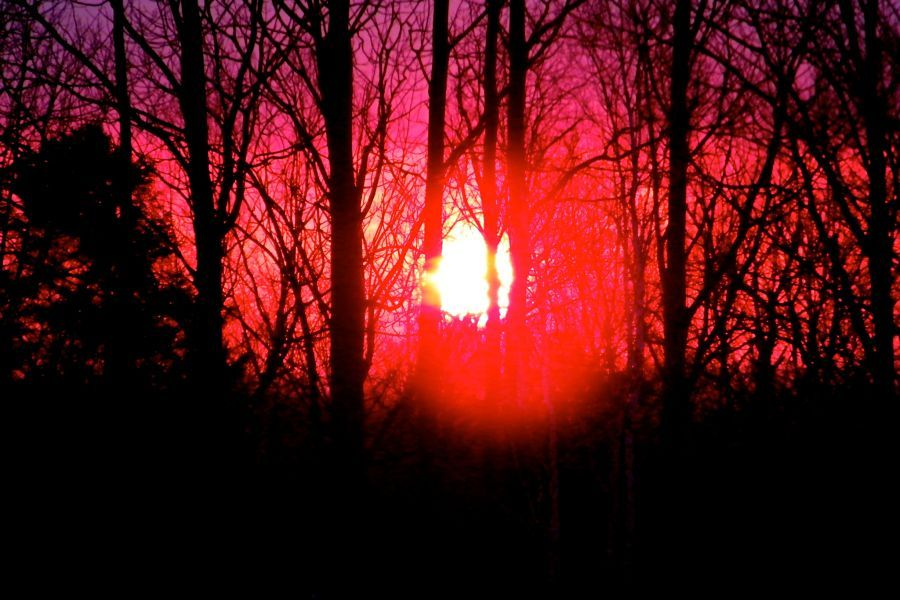 sunrise  March 21st 2014