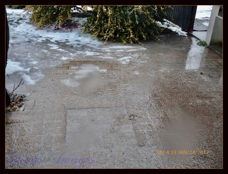Ice backdoor