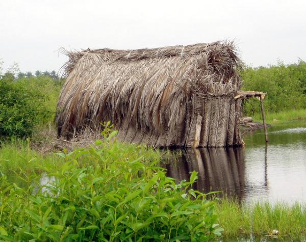 Palm Hut