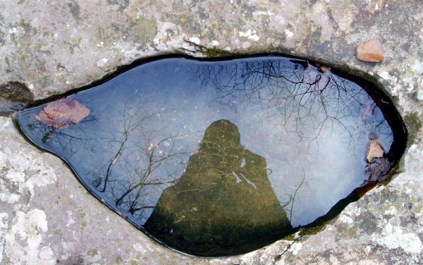 Self-Reflection:  Did I/See you/See me?
