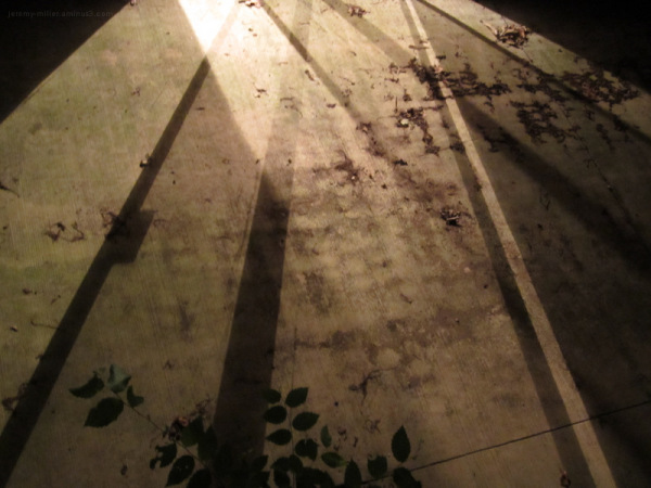 Patio stains