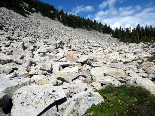 Cascade Mountains - Boulder field