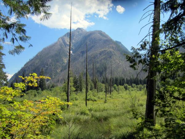 Cascade Mountains - Standing Up