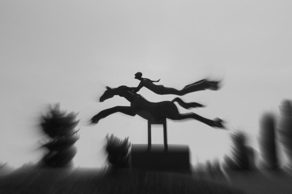 Dream Horse!