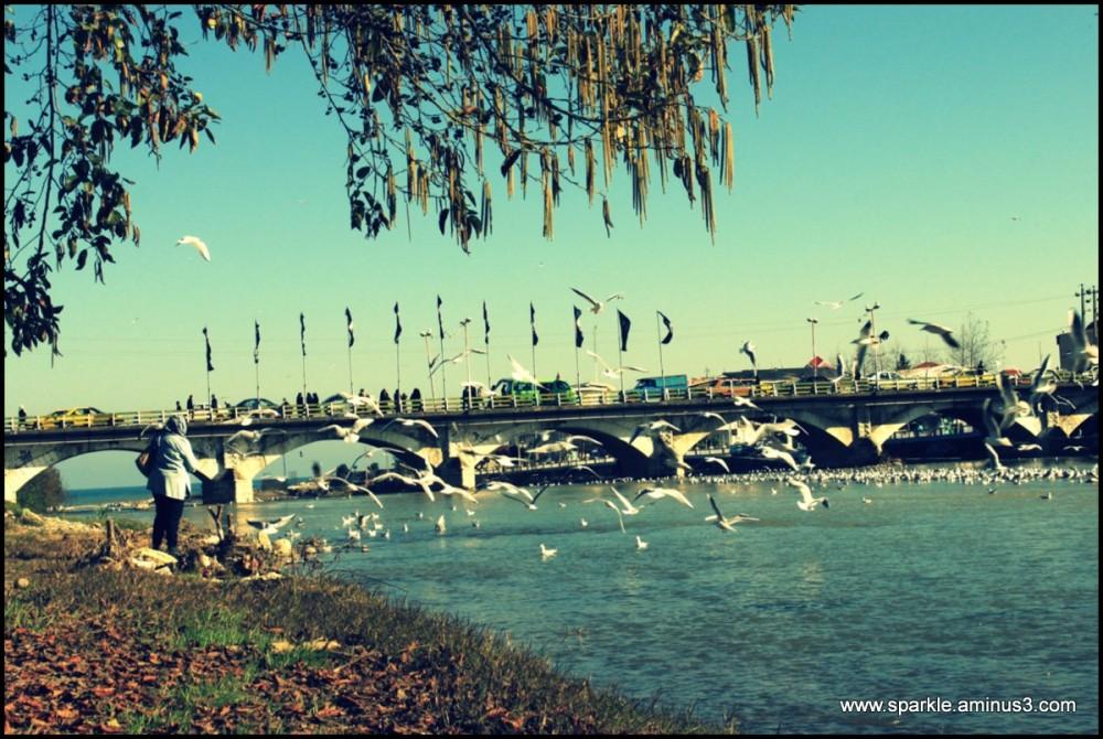 پل چشمه کیله