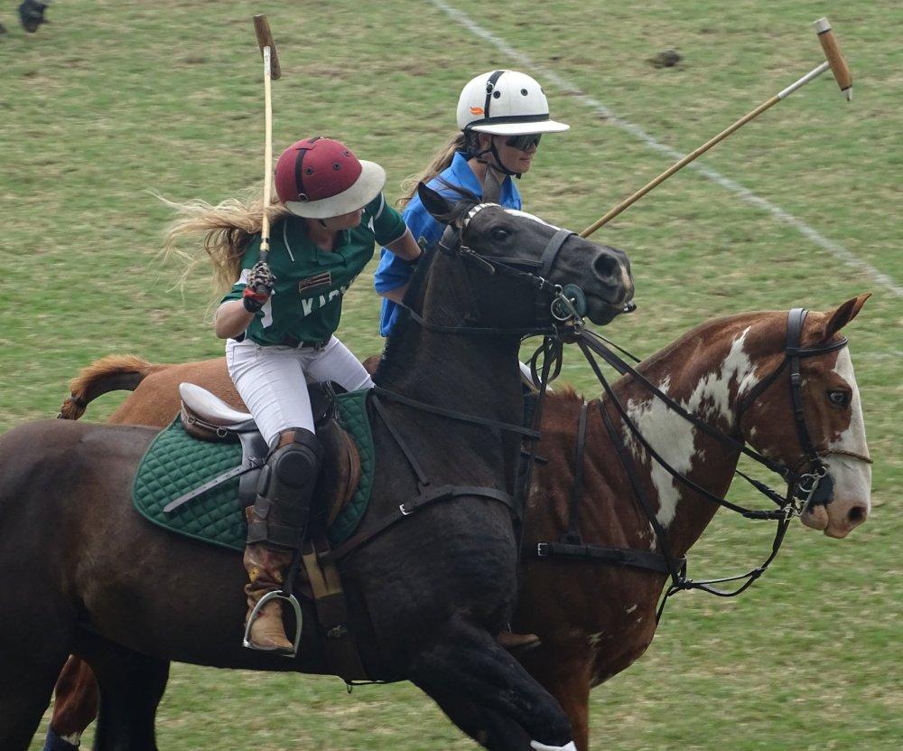 Maui Polo Club Horse Games at Makawao, Hawaii