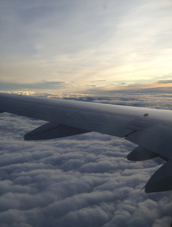 Aeroplane horizon