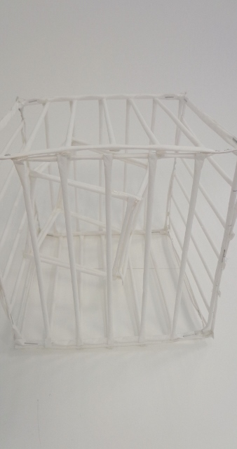 Cage within a cage
