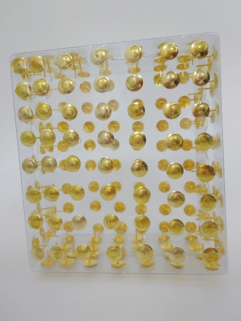 Golden pin box