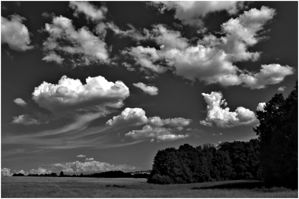 cumulus cloud
