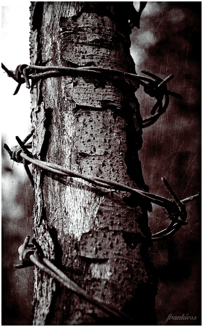 my chained soul