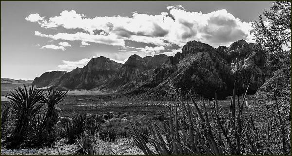 Landscape RedRock Canyon