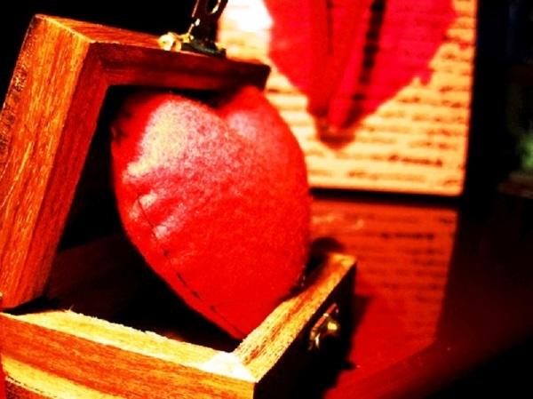 قلبی که خسته شد...