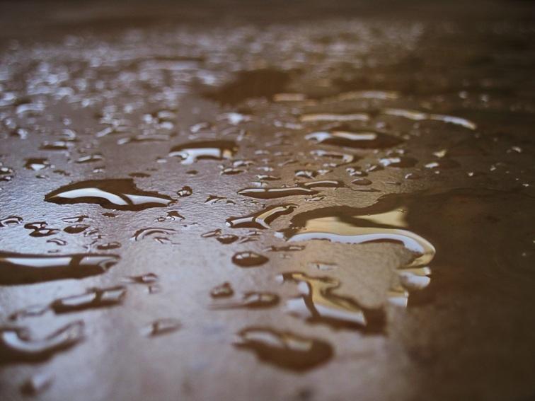 بویِ باران
