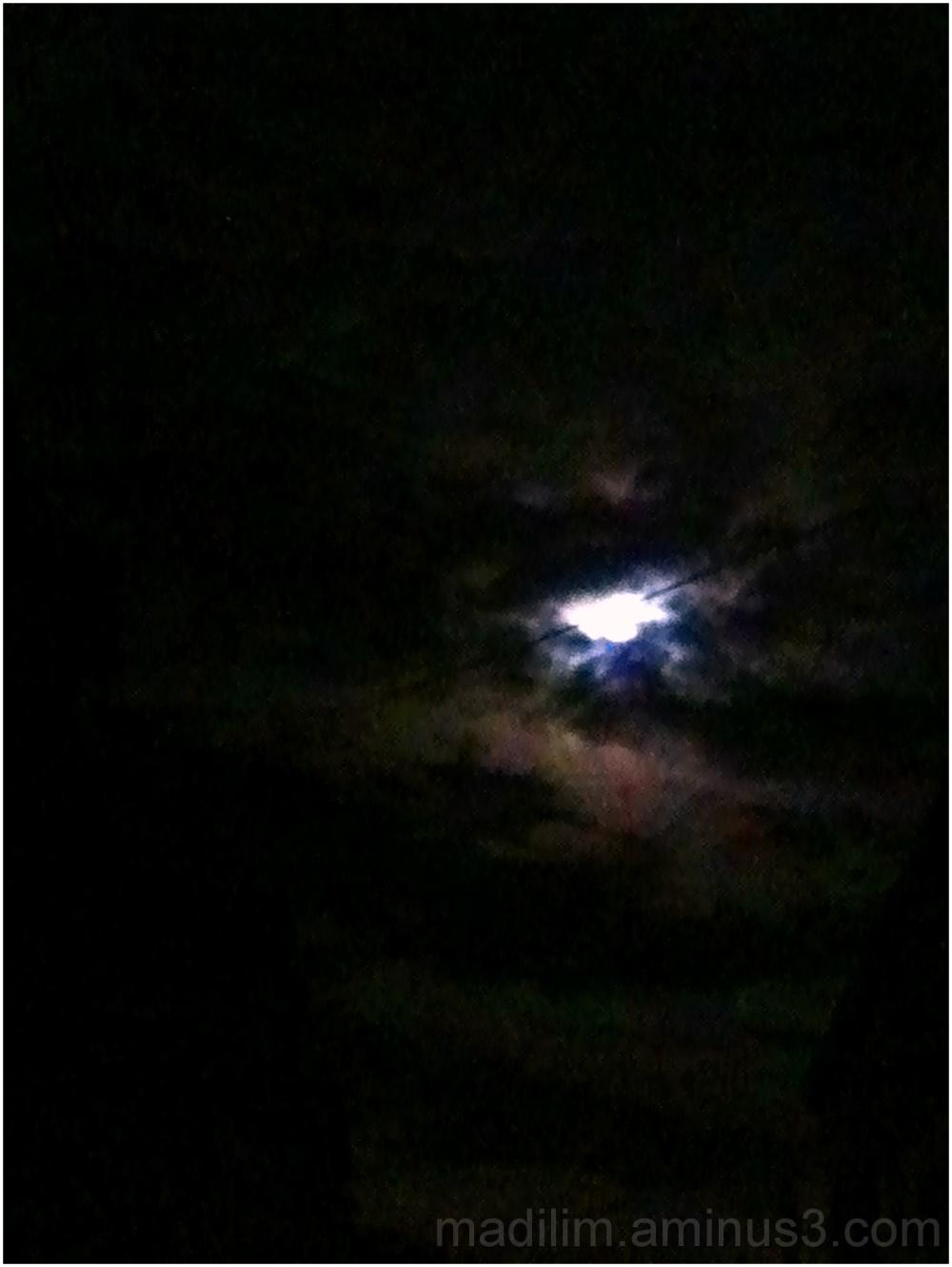 a shot at the moon