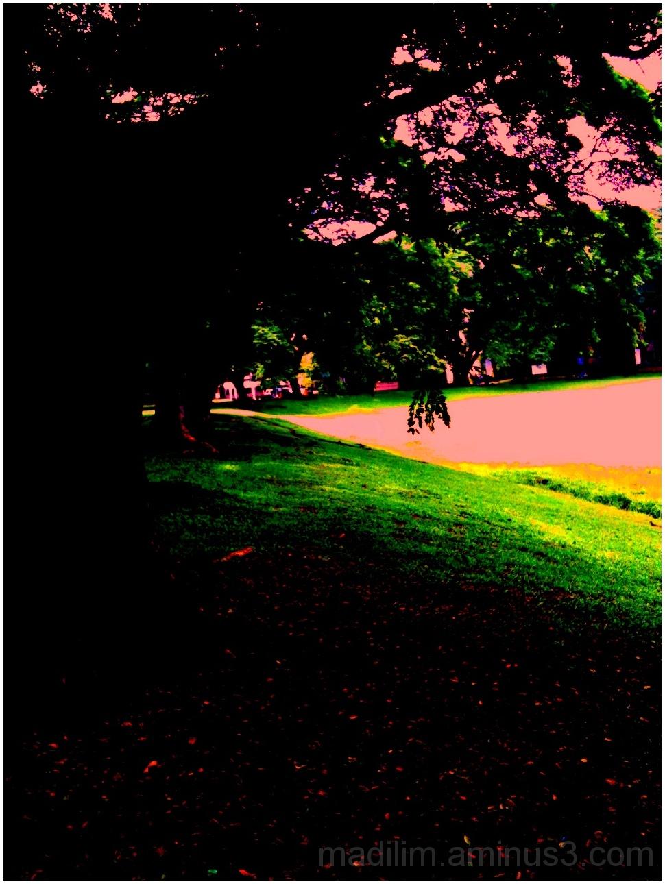 pinkish light
