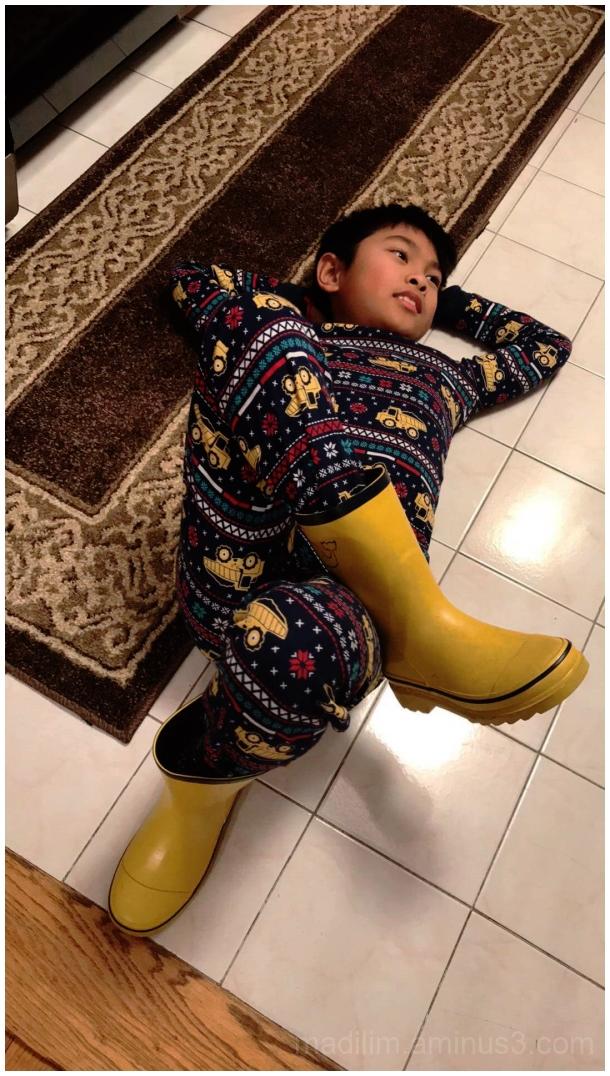 carpet bugger