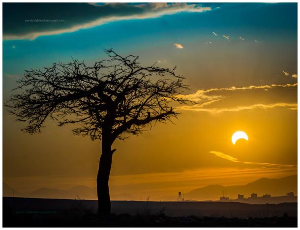 #solar_eclipse #parvizfalahatkar
