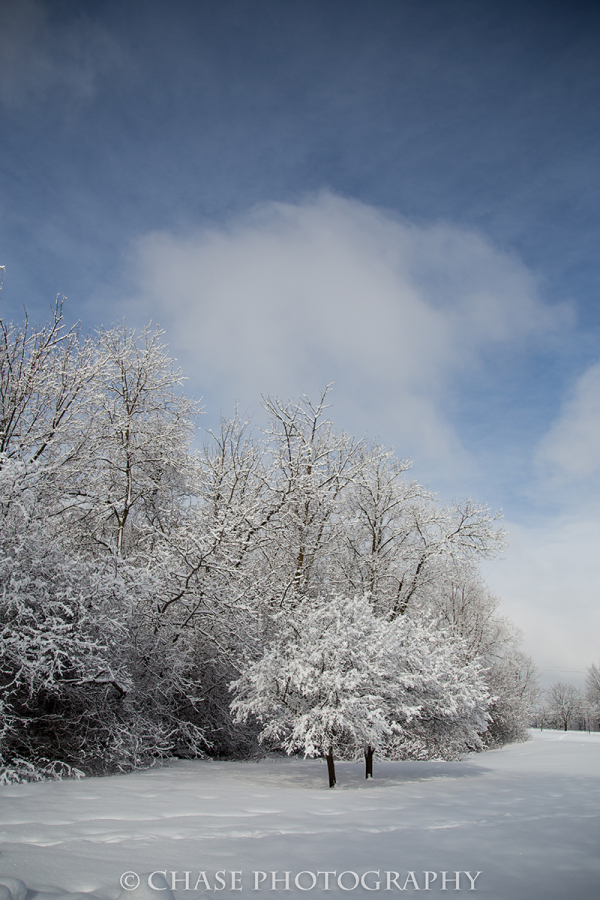 February Morning. Blue Skies. White World.