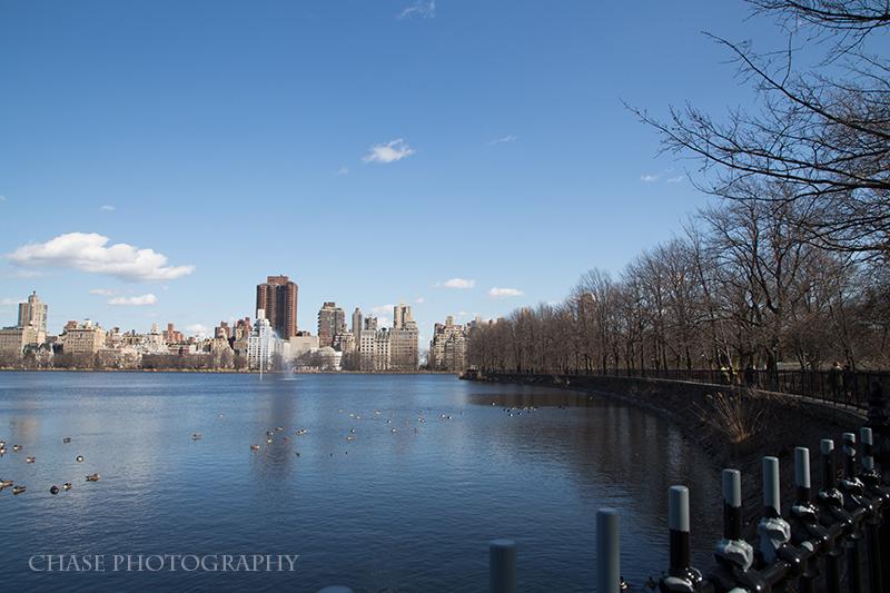 Across the Pond: Central Park