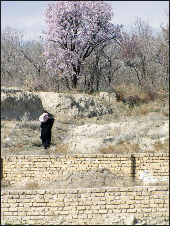 روستای لاسجرد