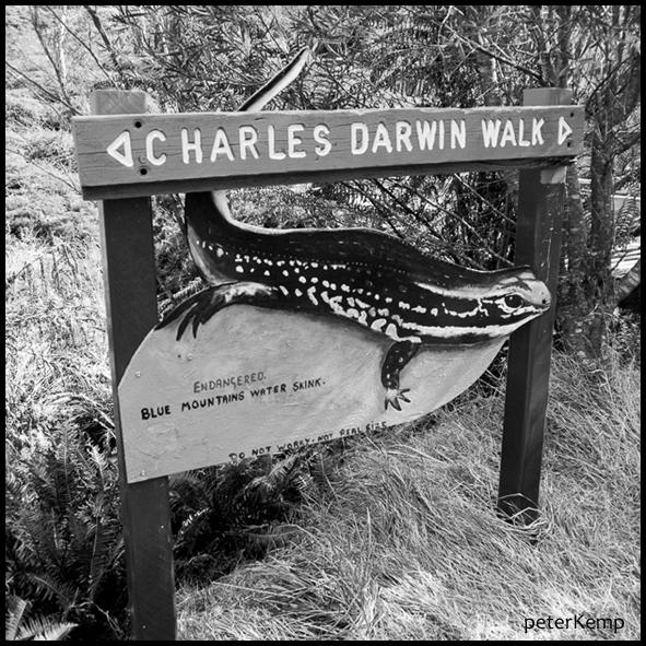 Charles Darwin Walk [1]