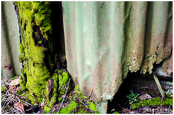 moss+decay [1]