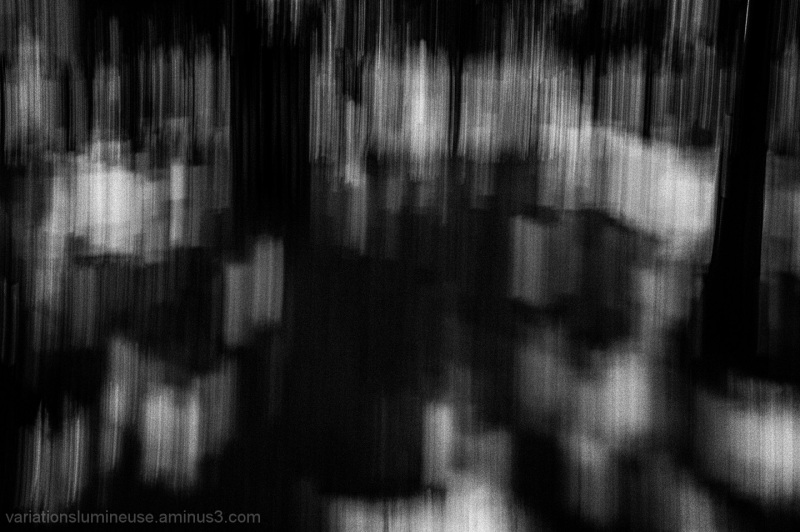 Blurred landscape in b&w.