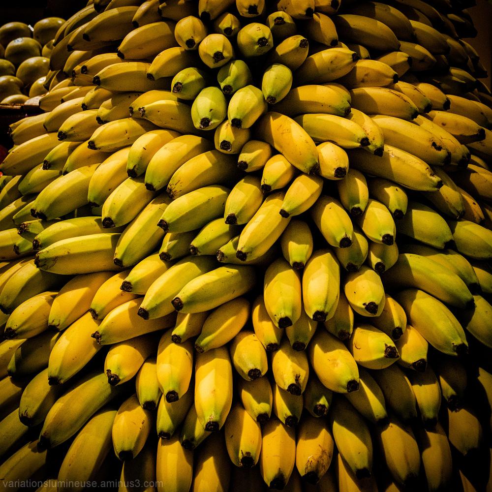 Bananas for sale.