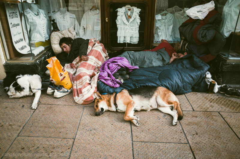 3 dogs and 3 teenagers asleep on sidewalk.