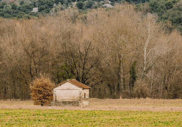 Small shed in field. France.