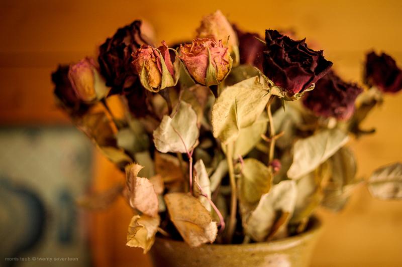 Dead flowers still-life.