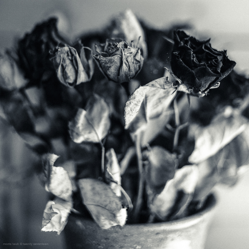 Still-life in black and white.