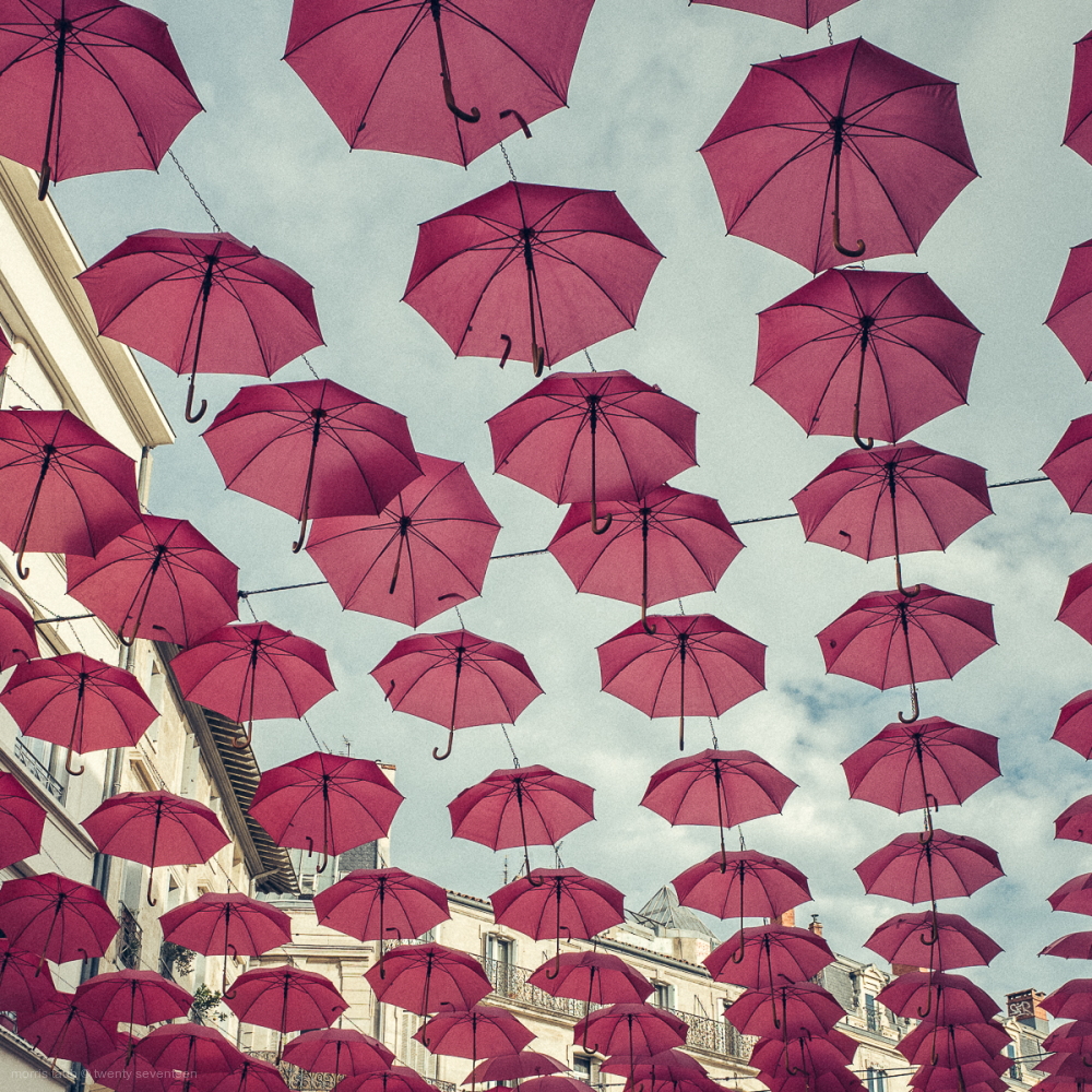 Pink umbrellas hanging in the street.